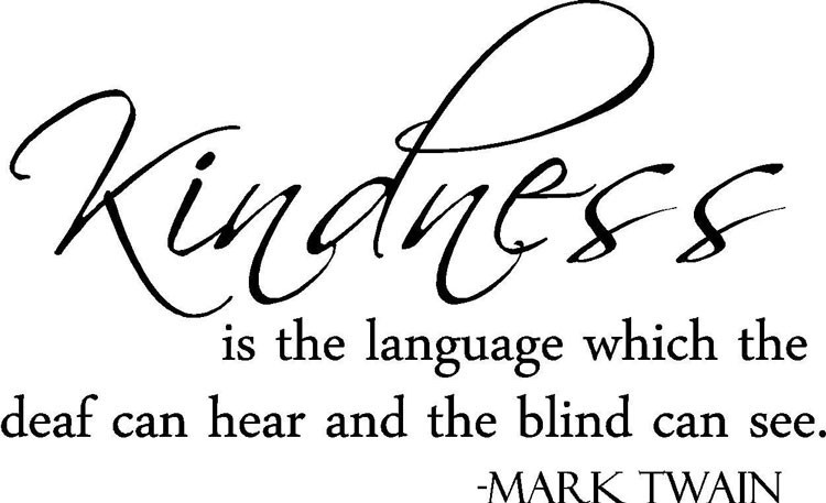 Mark Twain Kindness Quote  Mark Twain Quote Kindness is the Language Vinyl