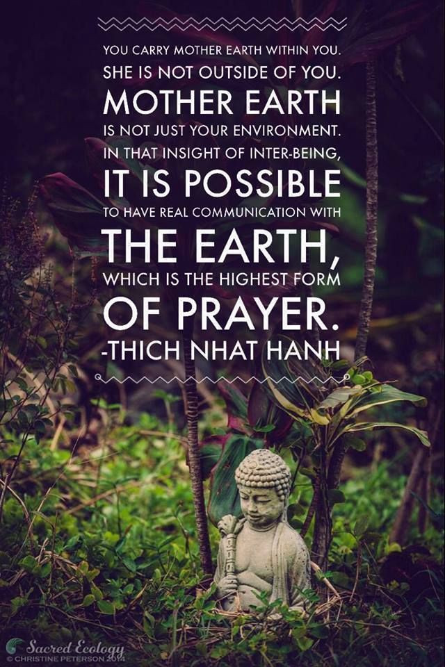 Mother Earth Quotes  25 best Mother Earth Quotes on Pinterest