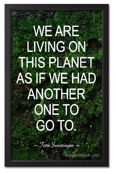 Mother Earth Quotes  Best 20 Mother Nature Quotes ideas on Pinterest