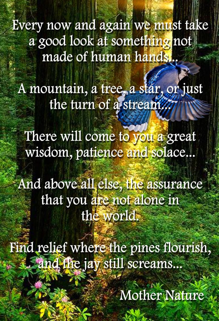 Mother Earth Quotes  native american blessing
