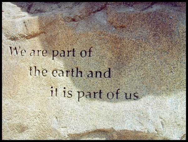 Mother Earth Quotes  White Wolf 10 Native American Quotes about Mother Earth
