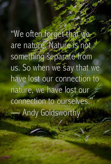 Mother Earth Quotes  Best Mother earth quotes ideas on Pinterest