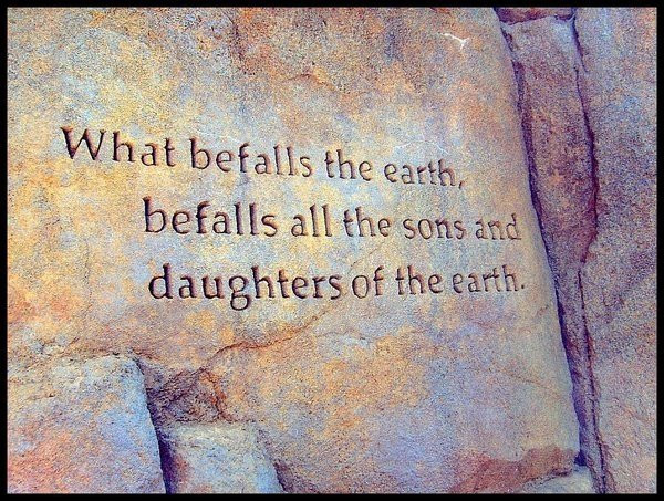 Mother Earth Quotes  White Wolf Native American Quotes about Mother Earth