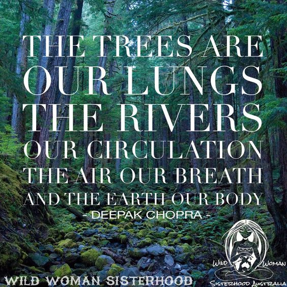 Mother Earth Quotes  Image result for free pictures quotes on the importance of