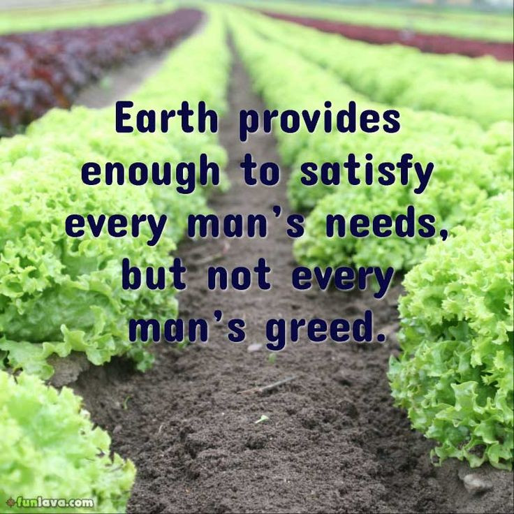 Mother Earth Quotes  The 25 best Mother nature quotes ideas on Pinterest
