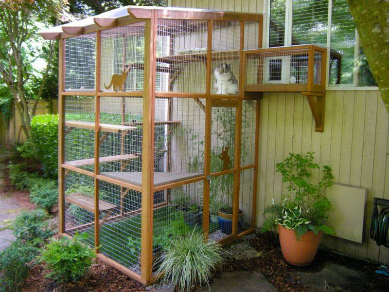 Outdoor Cat Enclosures DIY  It's Easy to Build a DIY Catio for Your Cat Catio Spaces