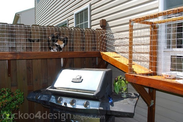 Outdoor Cat Enclosures DIY  Easy DIY Cat Enclosure to keep your indoor cats happy and safe