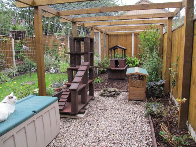 Outdoor Cat Enclosures DIY  25 best ideas about Outdoor Cat Enclosure on Pinterest