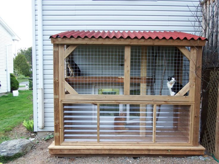 Outdoor Cat Enclosures DIY  Best 25 Outdoor cat enclosure ideas on Pinterest