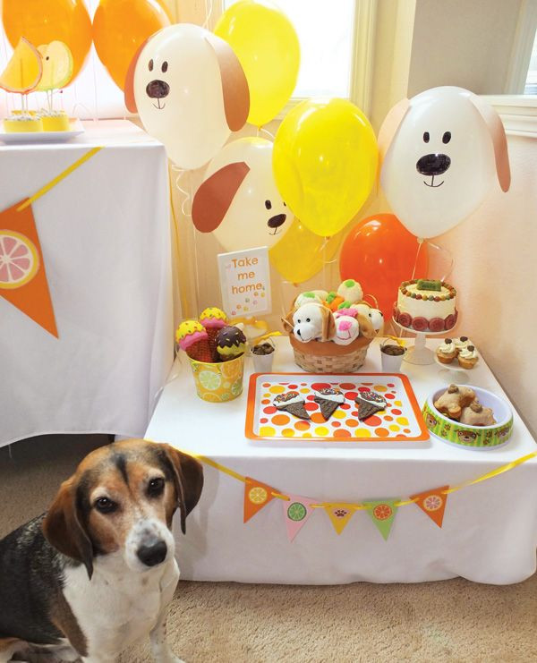 Puppy Birthday Decorations  25 best ideas about Dog birthday parties on Pinterest