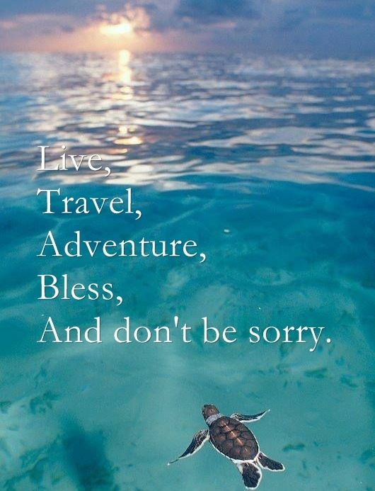 Quotes About Travel And Life  Adventure Travel Quotes QuotesGram