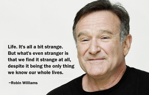Robin Williams Quotes On Life  ICON AND STATE OF MIND SARA ELMAN