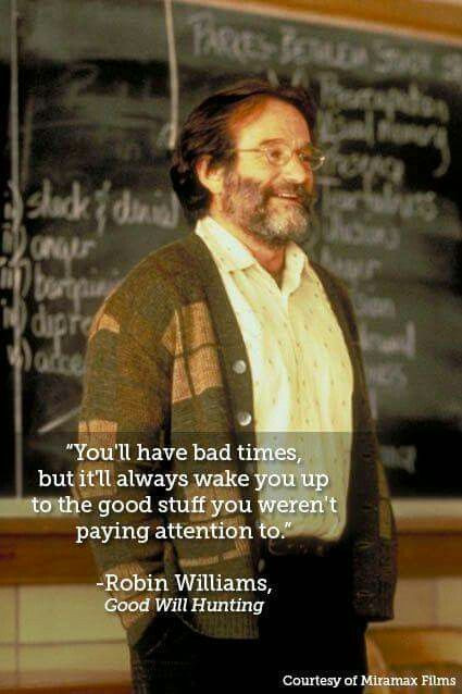 Robin Williams Quotes On Life  269 best images about What I watched on Pinterest