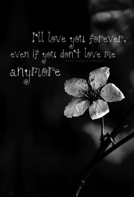 You Dont Love Me Quotes  Why Dont You Love Me Quotes QuotesGram