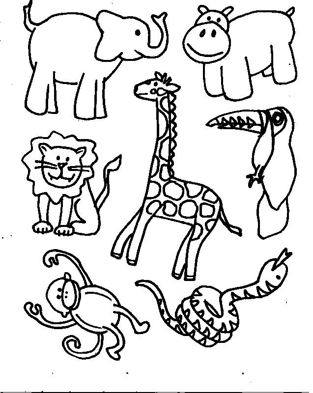 Zoo Animals Coloring Pages  Animals Printable Coloring Pages Free Printable Coloring