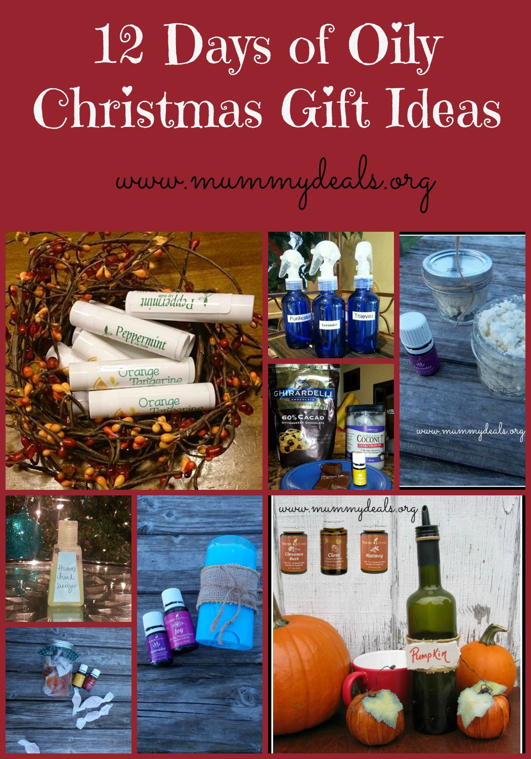 12 Days Of Christmas Gift Ideas  Homemade Thieves Hand Soap