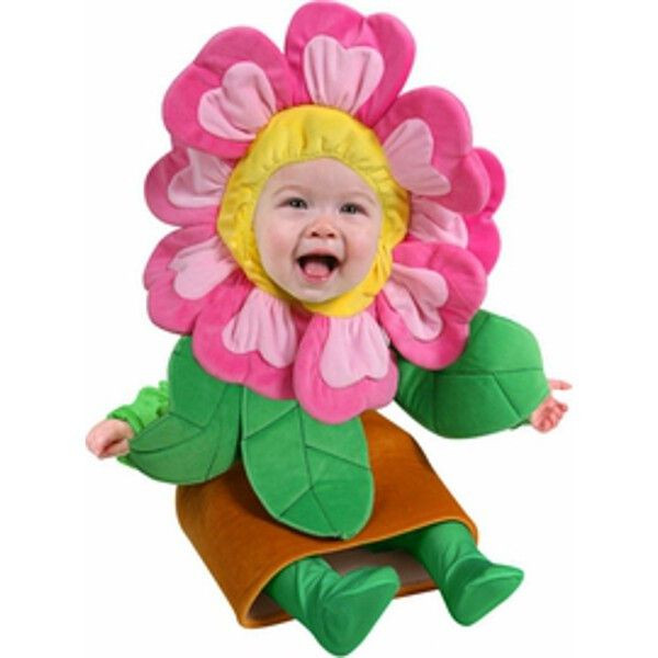 Baby Flower Halloween Costumes  25 Best Ideas about Flower Pot Costume on Pinterest