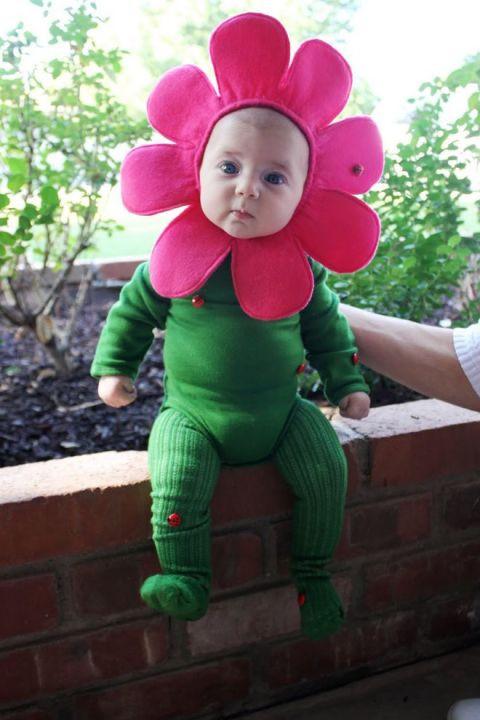 Baby Flower Halloween Costumes  30 Best Baby Halloween Costumes For 2017 Cutest Babies