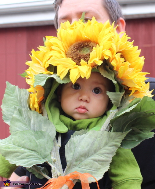 Baby Flower Halloween Costumes  Bouquet of Flowers DIY Baby Costume