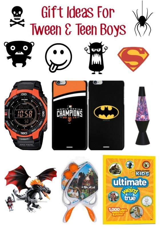 Boys Christmas Gift Ideas  Gift Ideas For Tween & Teen Boys