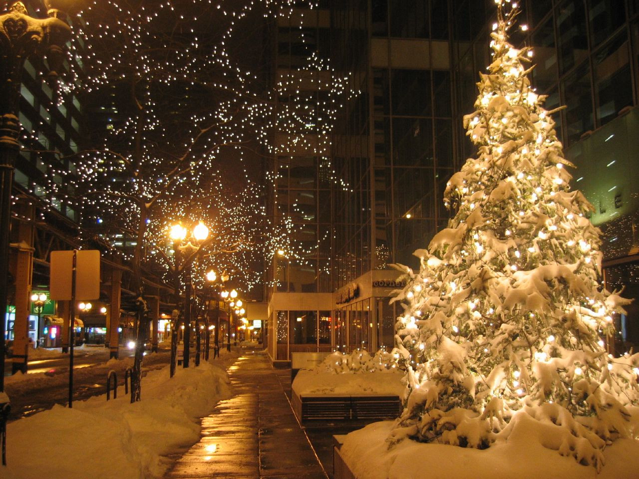 Christmas Tree Lighting Chicago 2019  The 10 Most Festive Destinations To Celebrate Christmas In