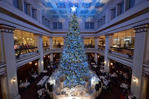 Christmas Tree Lighting Chicago 2019  Aloe Blacc hosts Macy's Annual Great Tree Lighting SPLASH