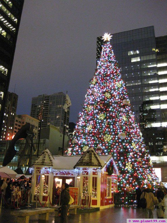 Christmas Tree Lighting Chicago 2019  Christkindlmarket Chicago Chicago at Daley Plaza