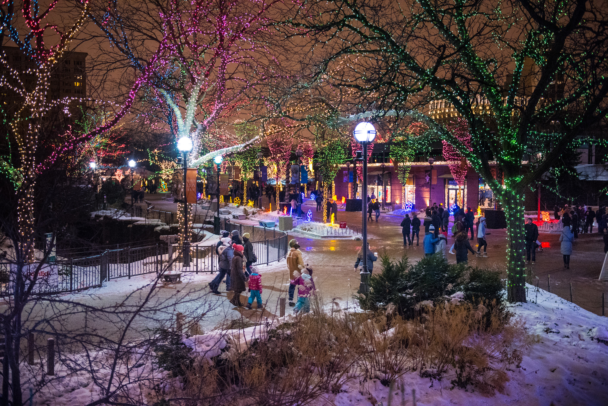 Christmas Tree Lighting Chicago 2019  Christmas In Chicago 2019 Guide Including Festive Things to Do