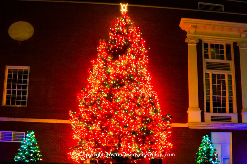Christmas Tree Lighting Chicago 2019  Boston Christmas Tree Lighting Events Schedule 2019