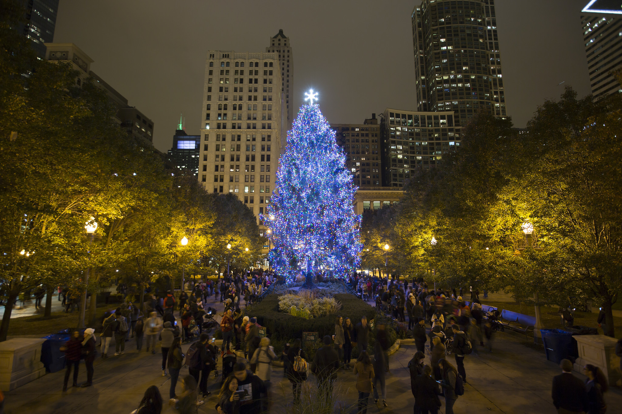 Christmas Tree Lighting Chicago 2019  Lighting The Christmas Tree In Chicago 2017