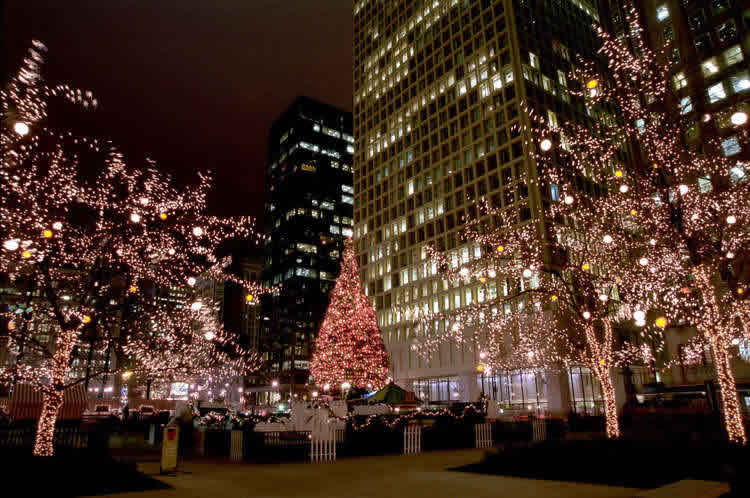 Christmas Tree Lighting Chicago 2019  Christmas and Holiday Decoration Products