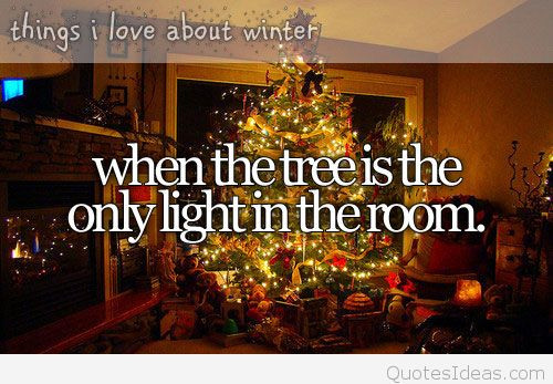 Christmas Trees Quotes  Christmas tree quotes