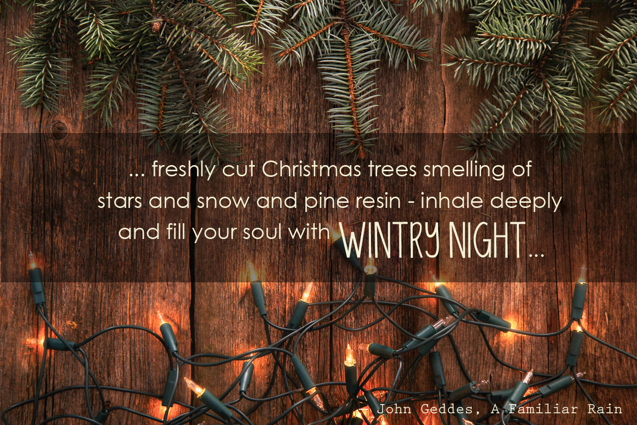 Christmas Trees Quotes  Christmas Tree Quotes And Sayings – Pelfusion