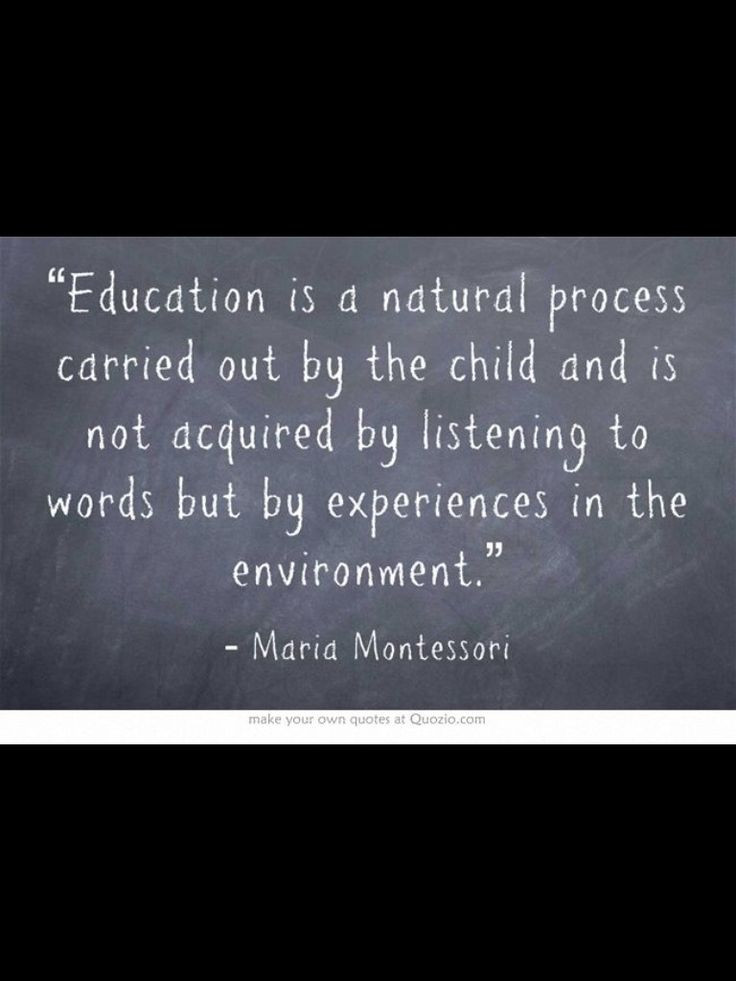 Early Childhood Education Quotes  Early Childhood Quotes QuotesGram