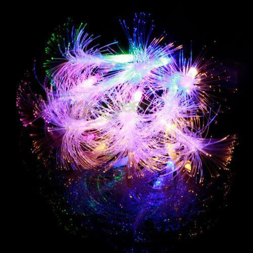 Fiber Optic Christmas Lighting  Fiber Optic Light String