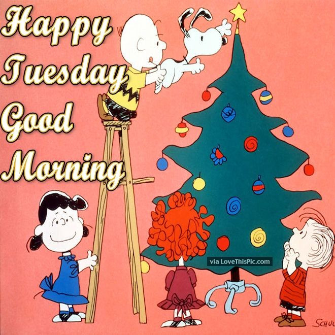 Good Morning Christmas Quotes  Christmas Tuesday Good Morning Quote s and