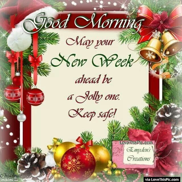 Good Morning Christmas Quotes  Good Morning Have A Jolly New Week Christmas Quote