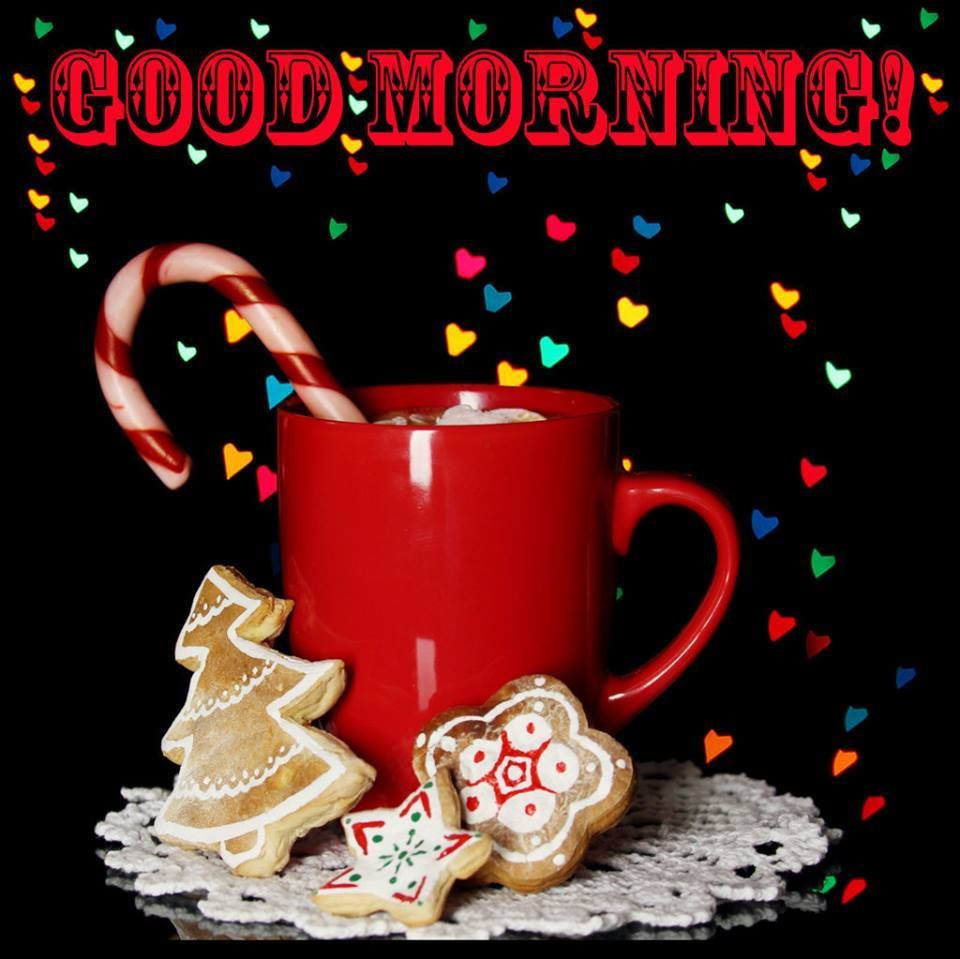 Good Morning Christmas Quotes  Cute Christmas Good Morning Image Quote s