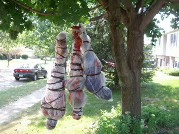 Halloween Outdoor Decorations  Top 21 Creepy Ideas to Decorate Outdoor Trees for Halloween