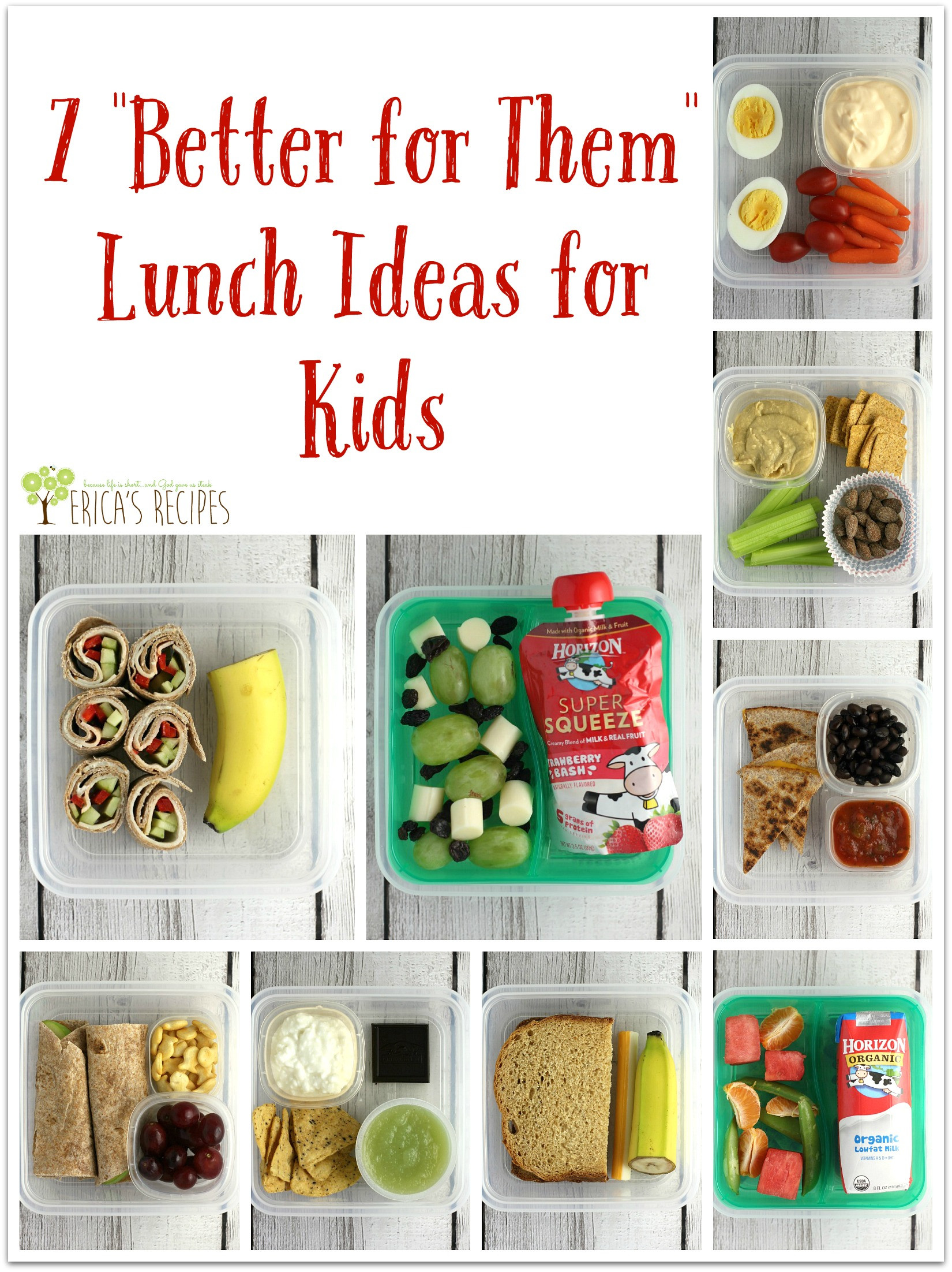"""Ideas For Kids  7 """"Better for Them"""" Lunch Ideas for Kids Erica s Recipes"""