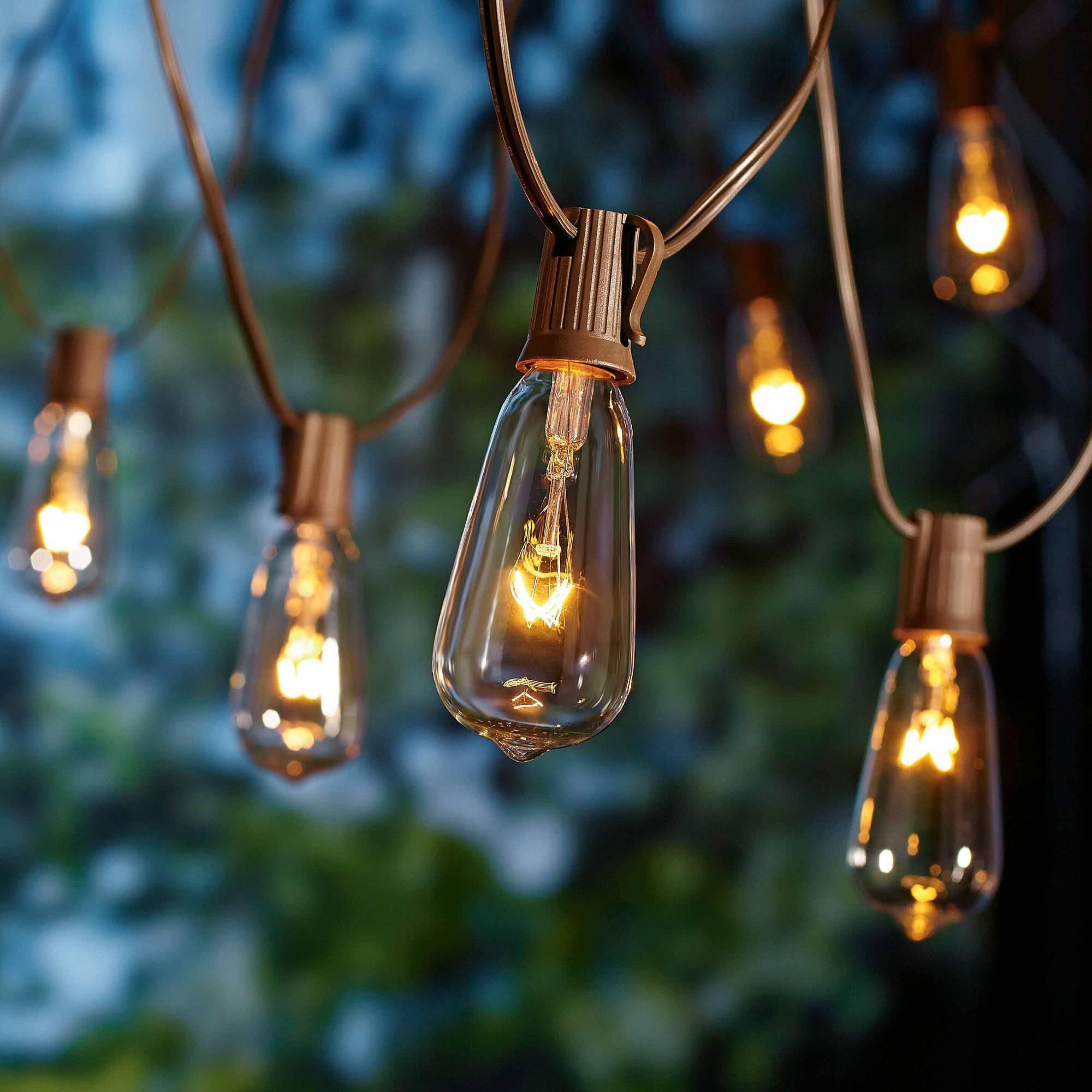 Indoor Outdoor Christmas Light  10 Count Glass Edison String Lights indoor outdoor