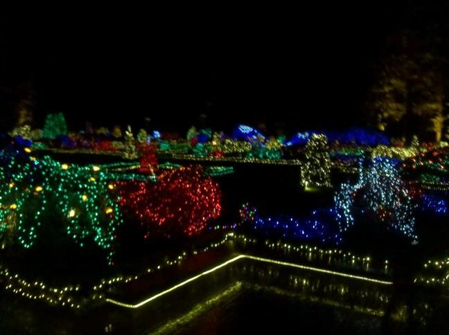 Oregon Garden Christmas  Christmas light garden coosbay Oregon