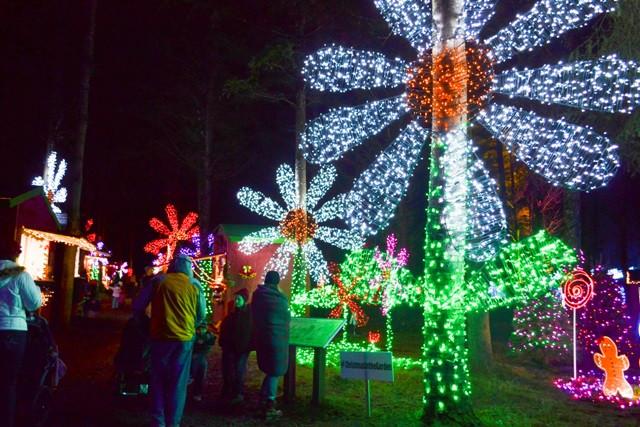 Oregon Garden Christmas  Ideas for Winter Break Family Fun