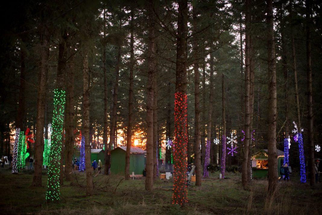 Oregon Garden Christmas  This Winter Walk in Oregon Features Over 600 000 Christmas