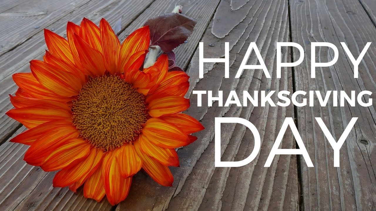 Thanksgiving Day Quotes  Best Wishes For Thanksgiving Day