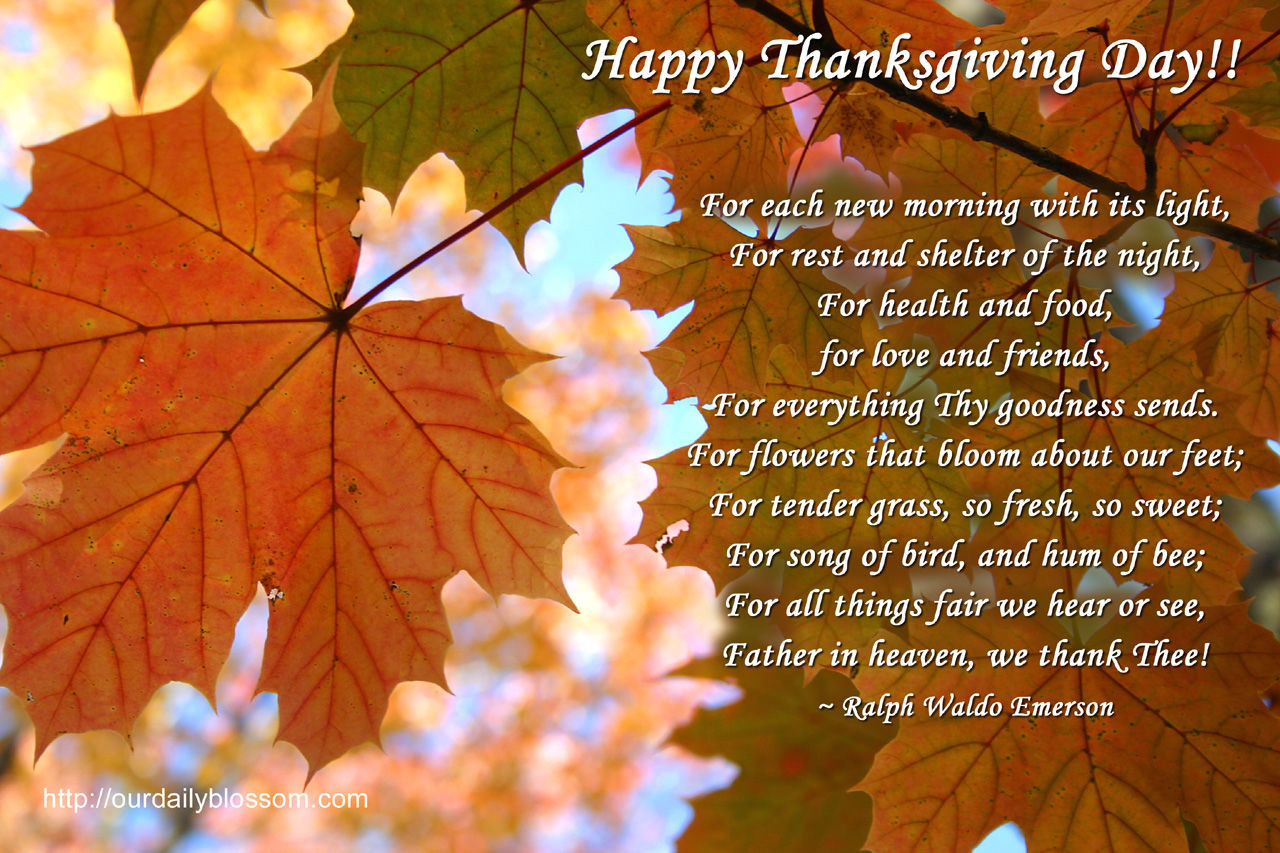 Thanksgiving Day Quotes  Happy Thanksgiving Day s and for