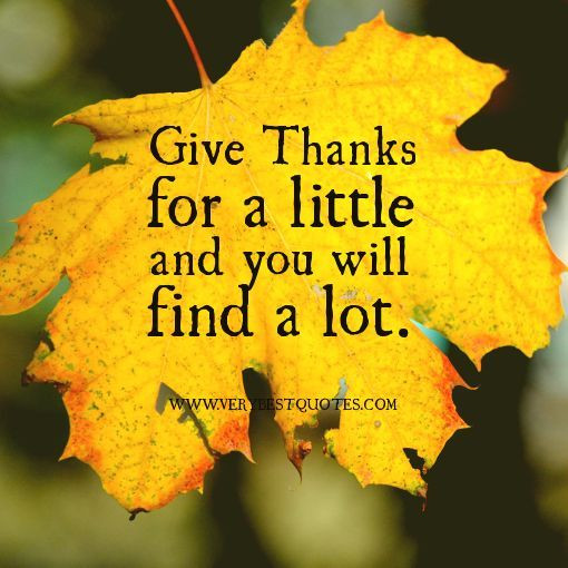 Thanksgiving Day Quotes  Give Thanks For A Little And You Will Find Alot